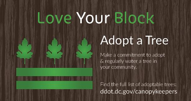 Love Your Block - Adopt a Tree. Make a committment to adopt & regularly water a tree in your community. Find the full list of adoptable trees at ddot.dc.gov/canopykeepers